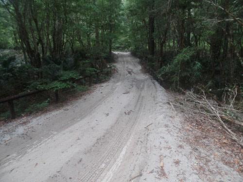 Fraser Island les routes de sable