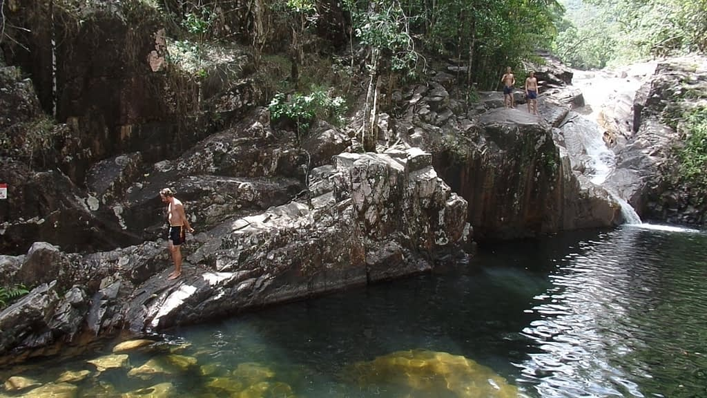 Eungella national parc