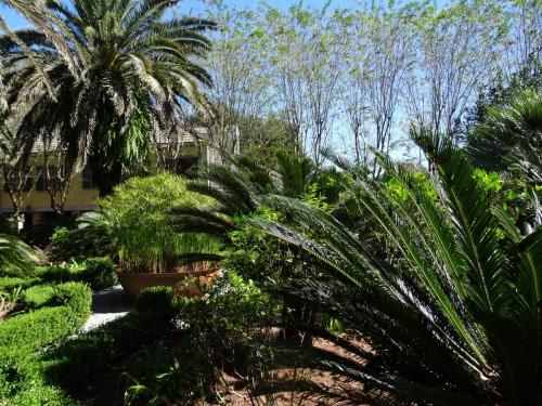 Le jardin de Laura Plantation