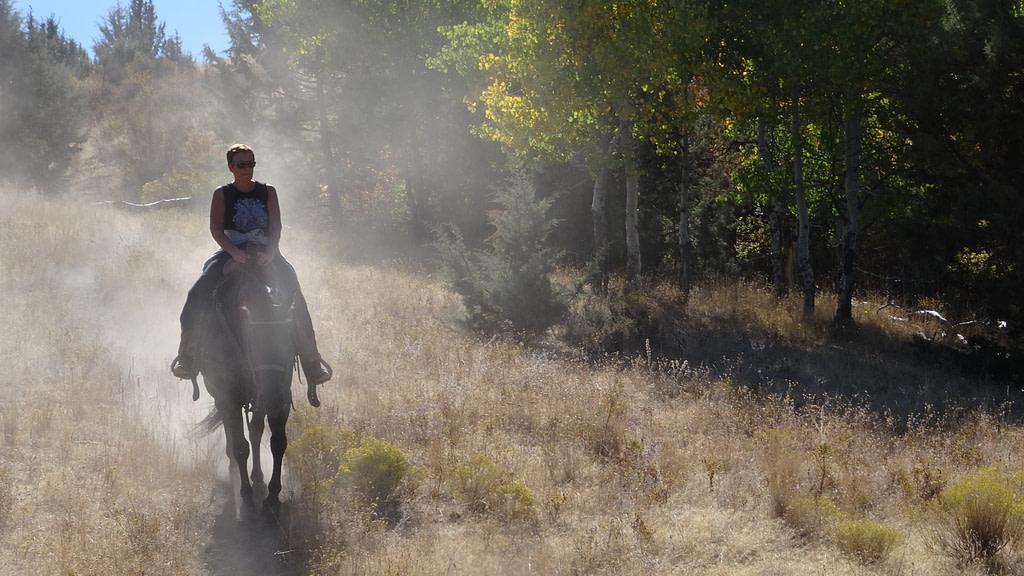 Balade à cheval en Oregon Une cavalière solitaire dans l'Oregon