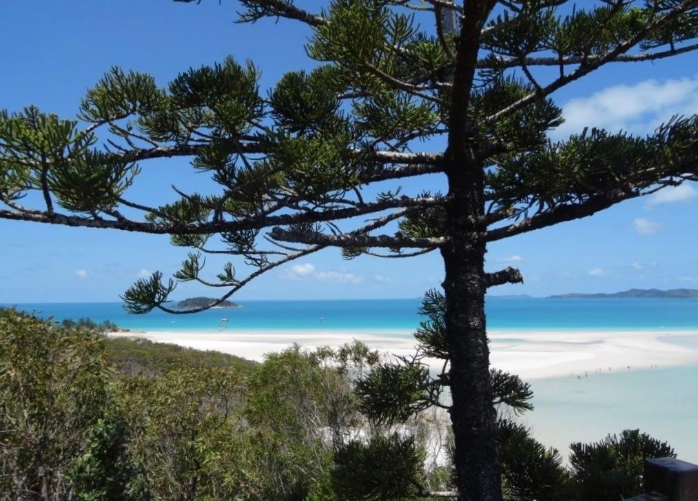 Whitehaven Beach croisière