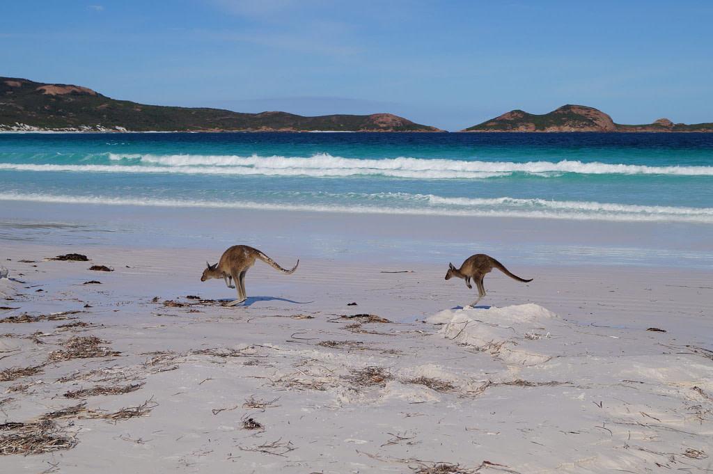 Ouest australien
