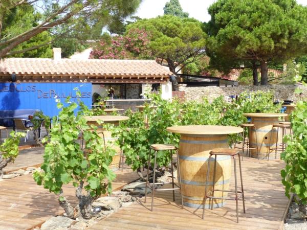 Desgustation de vin au milieu des vignes à Paulilles