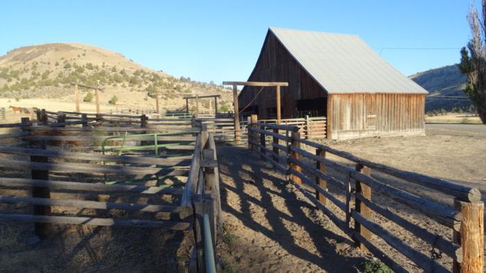 Balade à cheval en Oregon