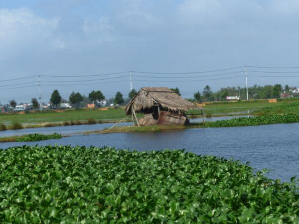 Paysage autour de Hoi An