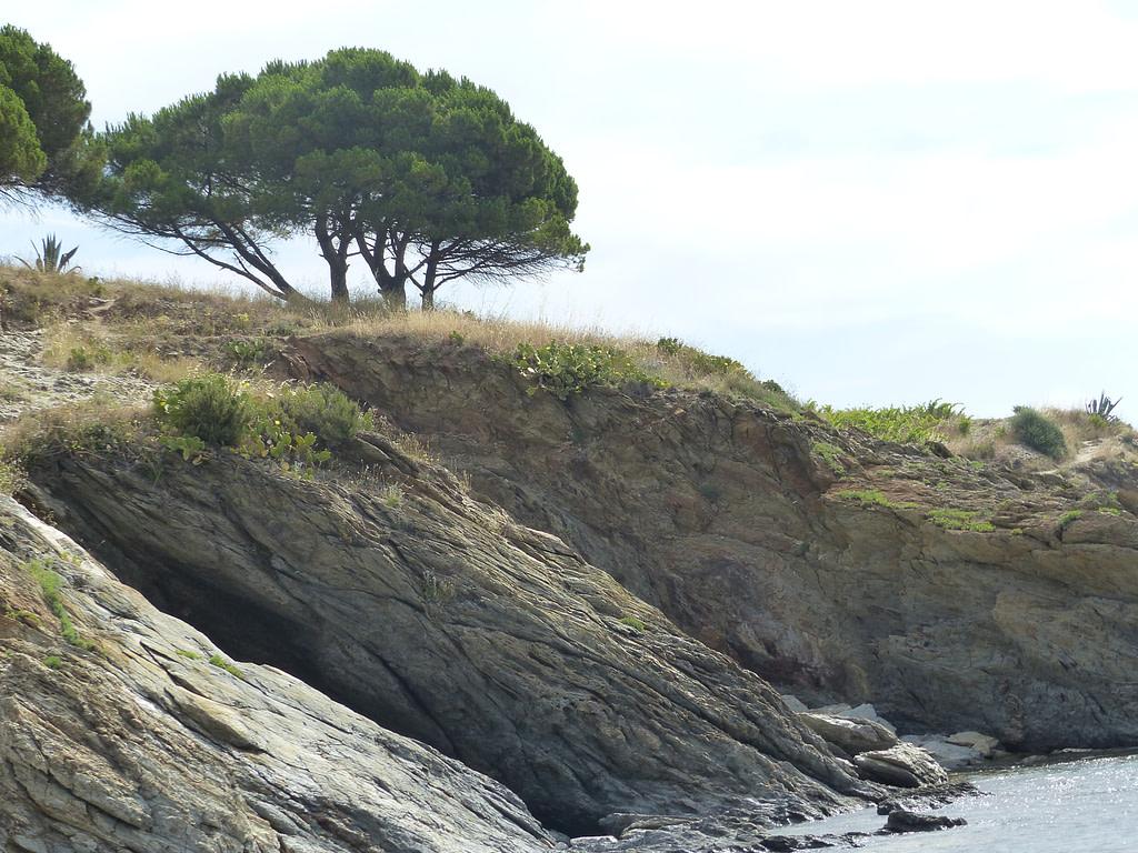 Baie de Paulilles